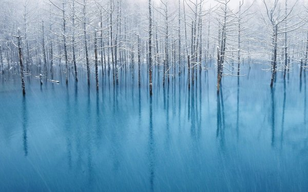 blue-pond-the-wallpaper-0003