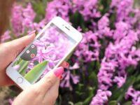 iPhone 6 Plus『カメラ交換プログラム』開始 写真がぼやけるなら必見