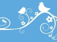 Twitterが30秒以上の動画投稿に対応 Vineと合わせ最大140秒に拡大